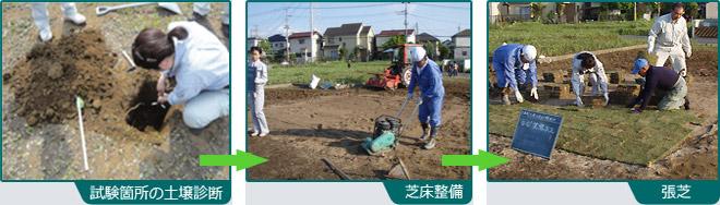 土壌診断から張芝