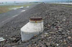 施工前植栽防潮堤2